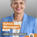 Wahlflyer